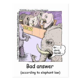 Elephant Lawyers Funny Tees Mugs Cards More