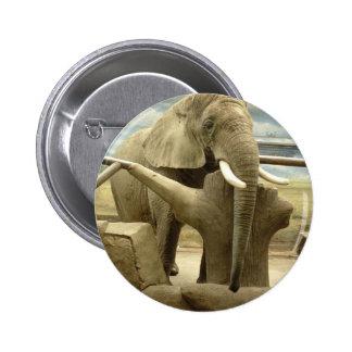Elephant Love Pin