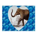 Elephant Love Postcards