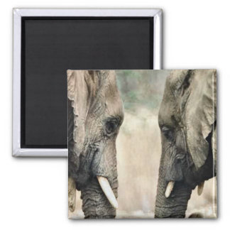 Elephant Lovers Art Gifts 2 Inch Square Magnet