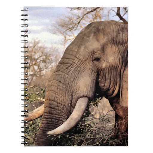 Elephant Lovers Wildlife Spiral Notebook
