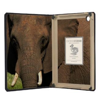 Elephant (Loxodonta Africana), Hwange National iPad Mini Retina Covers