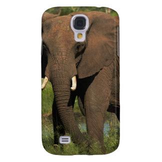 Elephant (Loxodonta Africana), Hwange National Galaxy S4 Cover