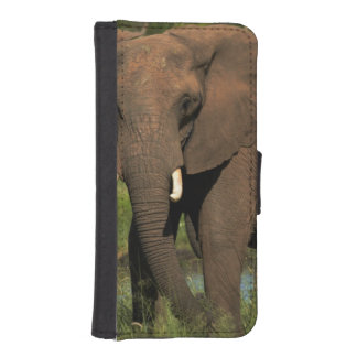 Elephant (Loxodonta Africana), Hwange National Wallet Phone Case For iPhone SE/5/5s