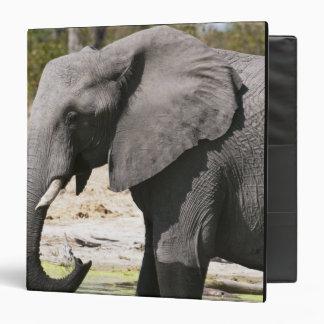 Elephant (Loxodonta africana), Savute Channel Vinyl Binder