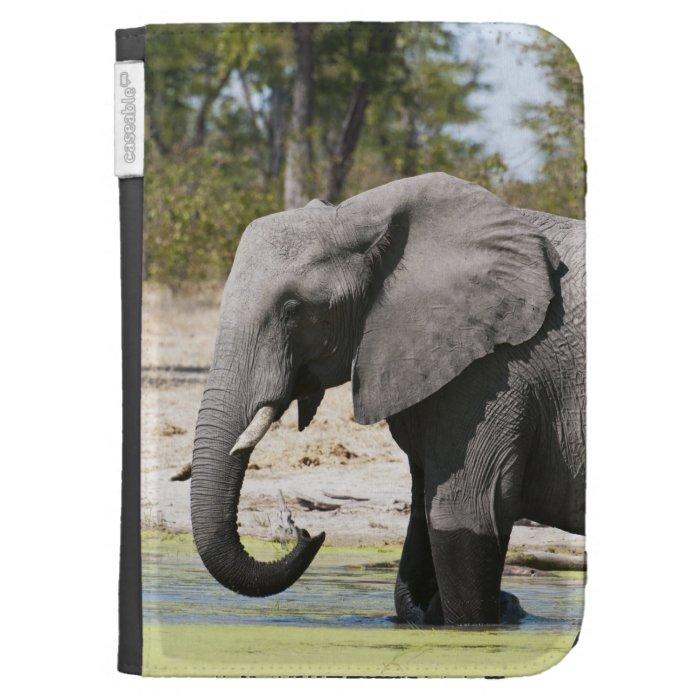 Elephant (Loxodonta africana), Savute Channel Kindle 3G Covers