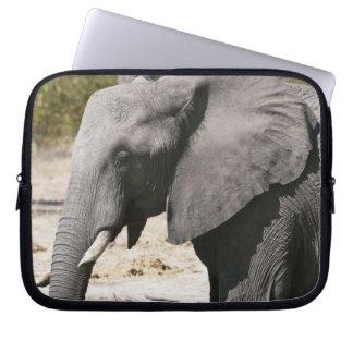 Elephant (Loxodonta africana), Savute Channel Laptop Sleeve