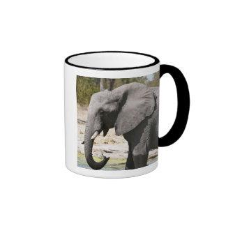 Elephant (Loxodonta africana), Savute Channel Coffee Mug