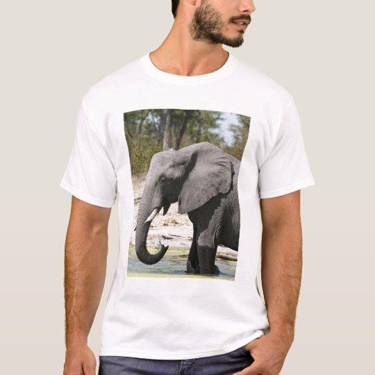 Elephant (Loxodonta africana), Savute Channel T-Shirt