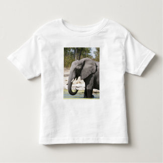 Elephant (Loxodonta africana), Savute Channel Toddler T-shirt