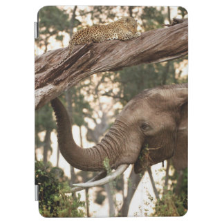 Elephant (Loxodonta) Testing Scent Of Leopard iPad Air Cover