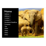 Elephant mom and calf Business Card