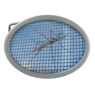 Elephant Mosquito ~ Buckle Oval Belt Buckle