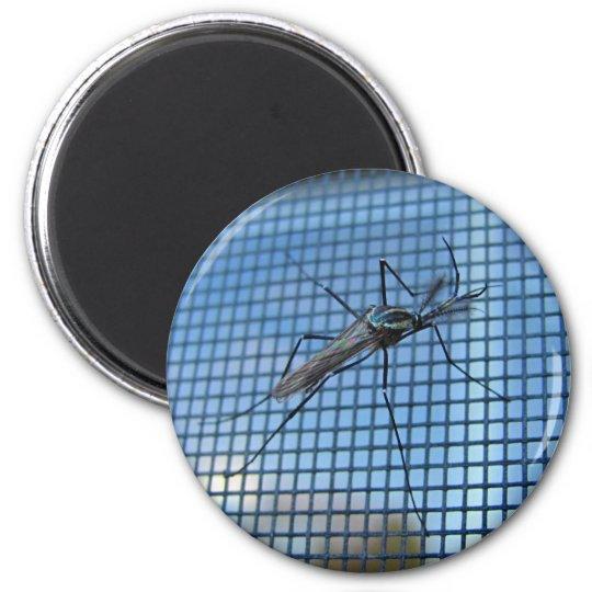 Elephant Mosquito ~ magnet