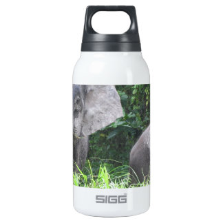 Elephant mother and baby insulated water bottle