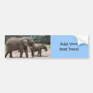 Elephant Mother and Baby Photo Car Bumper Sticker