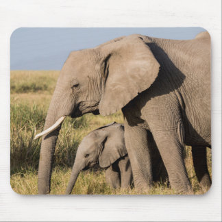 Elephant Mother and Her Baby Mouse Pad