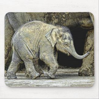 Elephant Newborn Calf Mouse Pad