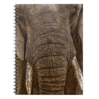 Elephant Notebook- Notebook elephant
