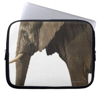 Elephant on white background, side view computer sleeve