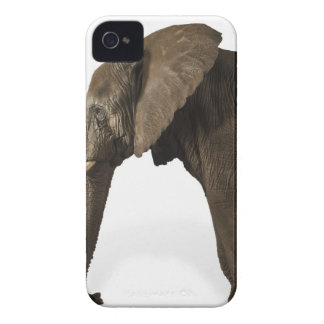 Elephant on white background, side view iPhone 4 cover