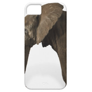 Elephant on white background, side view iPhone SE/5/5s case