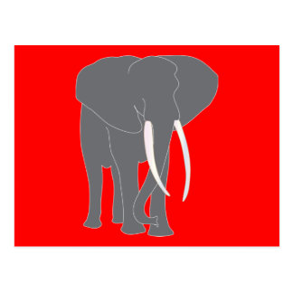 Elephant Pachyderm Elephantidae Mammals Animals Postcard