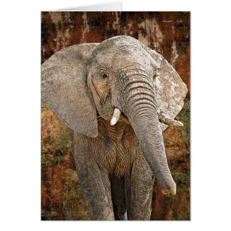 Elephant painting African art Cards