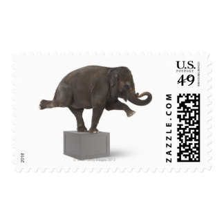 Elephant performing trick on box postage stamps