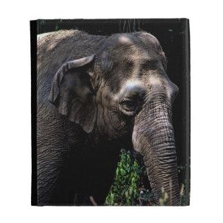 Elephant Photo iPad Cases
