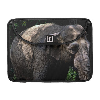 Elephant Photo Sleeves For MacBook Pro
