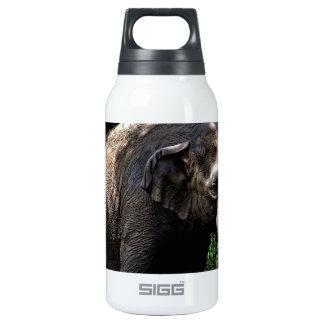 Elephant Photo Thermos Bottle