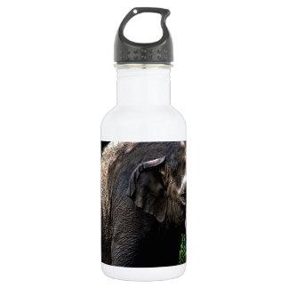 Elephant Photo Water Bottle