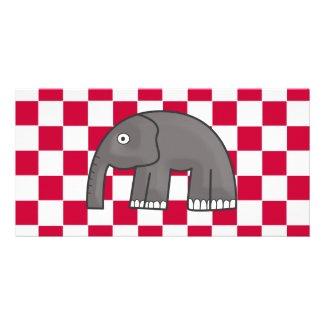 elephant photocard