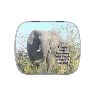 """ELEPHANT"" (photog) JELLY BELLY CANDY TIN"