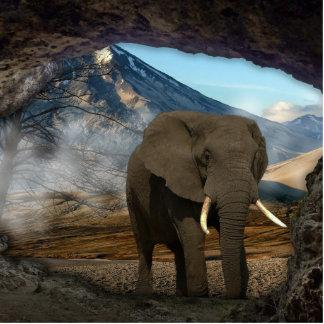 Elephant Photo Sculptures