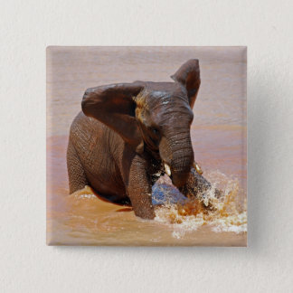 Elephant playing with water button