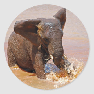 Elephant playing with water classic round sticker