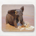 Elephant playing with water mouse pad