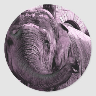 Elephant Pointing Forward with the Trunk Sketch Classic Round Sticker