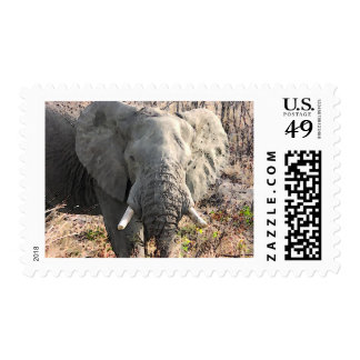 Elephant Pop Art Postage