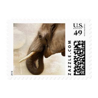 Elephant Postage Stamp
