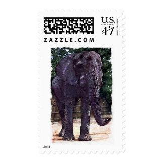 Elephant Postage Stamps