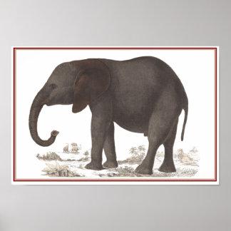 ELEPHANT PRINT
