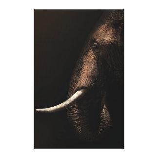 Elephant Profile Canvas Canvas Prints