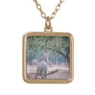 Elephant reaching for Acacia tree Gold Plated Necklace