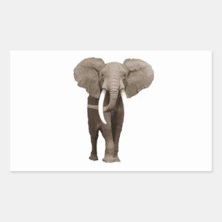 Elephant Rectangular Sticker