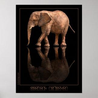 Elephant Reflection Poster
