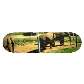 Elephant Road Skateboard