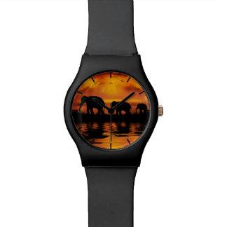 Elephant Safari May28th Watch